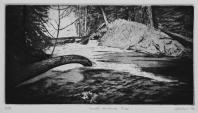 Runoff, McKenzie River rs2016