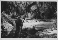 Wading Up Tryon Creek rs2016