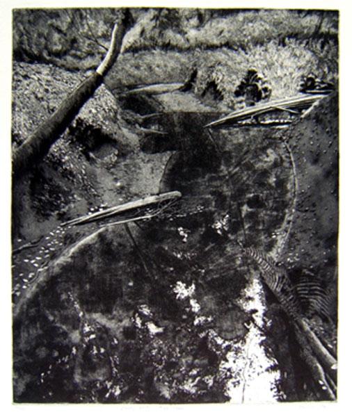1-etching-Cloudy-Water-Tryon-Creek-1996