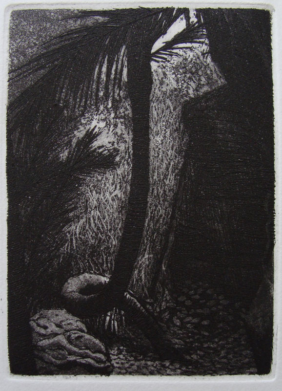 8-etching-Twisted-Nikau-2010