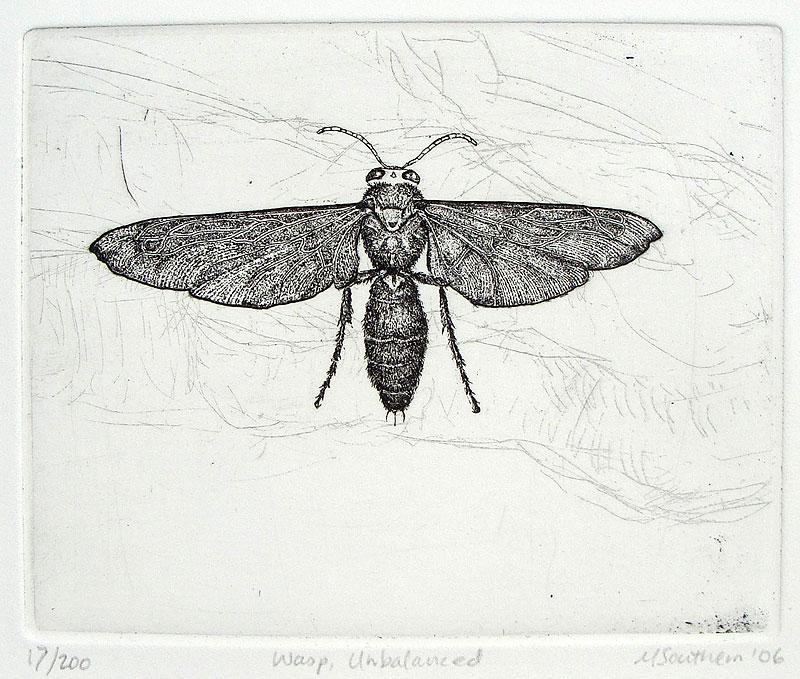 Wasp-Unbalanced